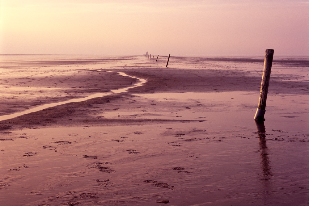 Tideland in Westerhever, Germany.    Photographed by Alexandre Miguel Maia